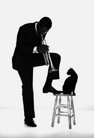 """""""In ancient times cats were worshipped as gods; they have not forgotten this.""""  ~ Terry Pratchett /Photo by Jerry Schatzberg, Kenny Dorham. Tromba - Fairfield, 1924 - New York, 1972"""
