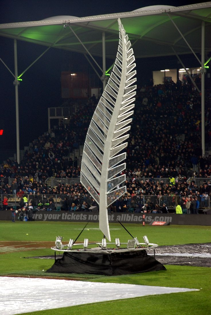 All Blacks rugby (Ned's TENT)