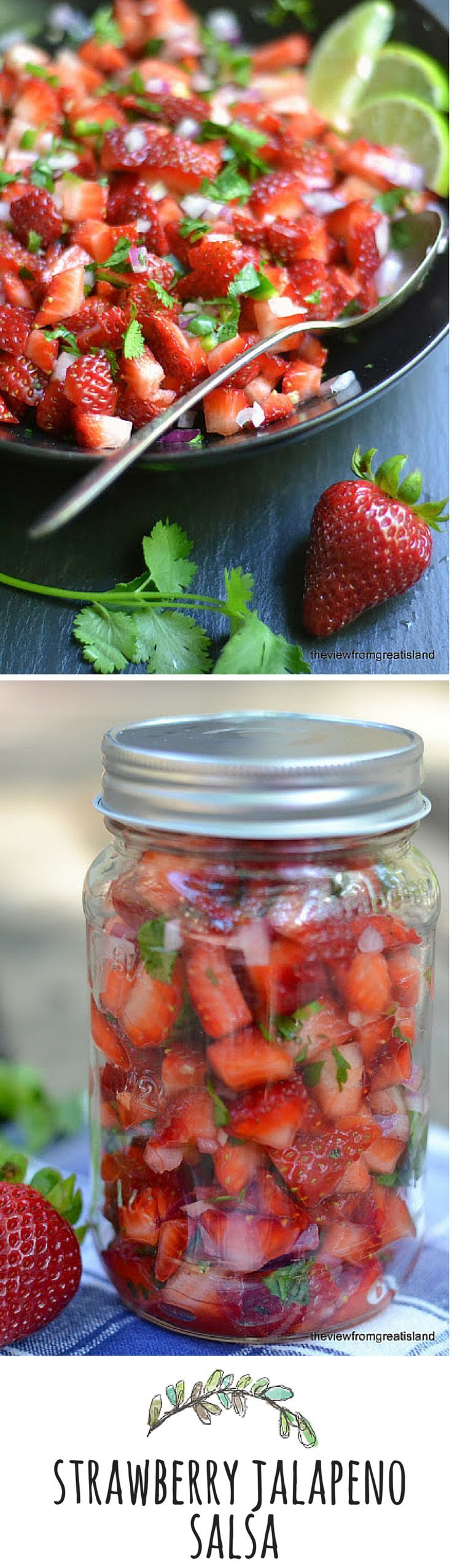 A strawberry jalapeno salsa! Definitely a different type of salsa worth trying out this summer.