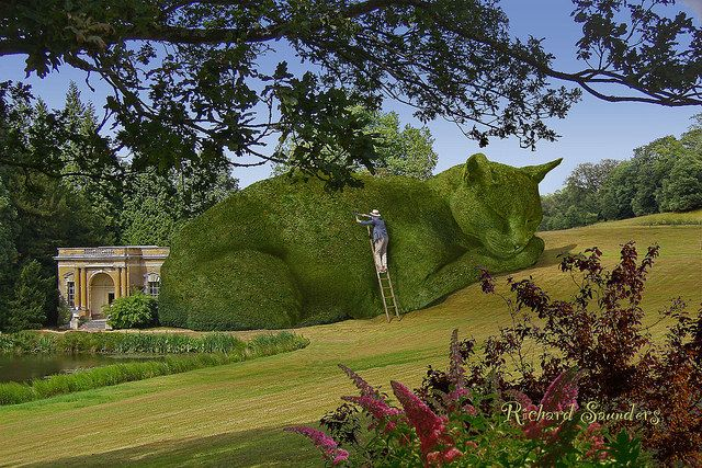 The Topiary Cat needs constant maintenance, and I hate heights. Still, it has to be done.:
