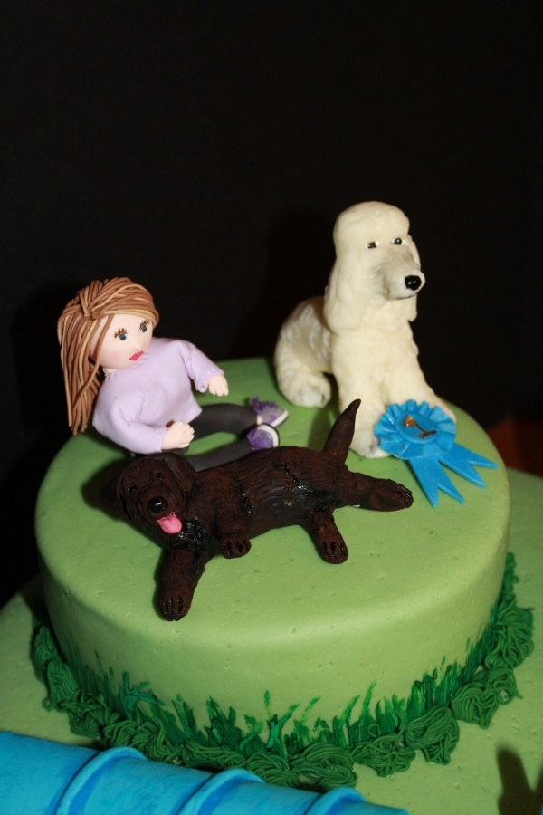 18 Best Poodle And Agility Cake Designs Images On
