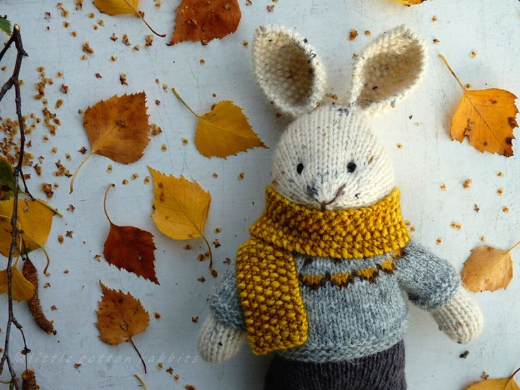 autumn knits and woodsy walks
