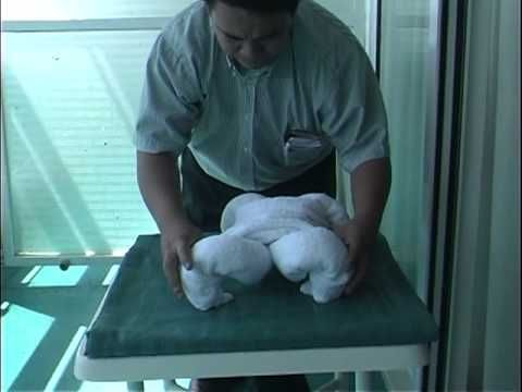 For making animals with towels, this is the one video to watch. From start to finish, learn how to make a bulldog, a duck, an elephant, a turtle, a mouse and a monkey. Whether you're entertaining your children, or impressing your adult fans, the art of towel folding is easy to learn and fun to do.