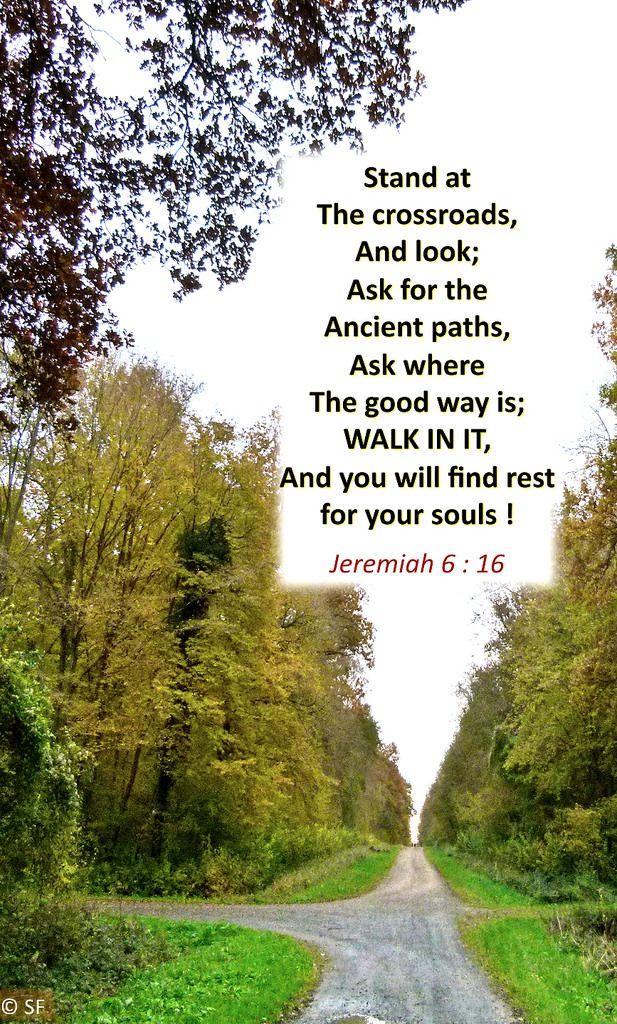 https://flic.kr/p/BX68H4   Jeremiah 6, 16   Ebenezer Halleluiah creation Saint Gobain Forest, Aisne, France October 2010