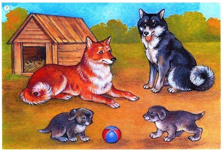 psia rodinka
