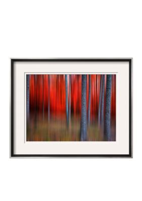 Art.Com  Gimick By Philippe Sainte-Laudy, Framed Photographic Print - Multi - One Size