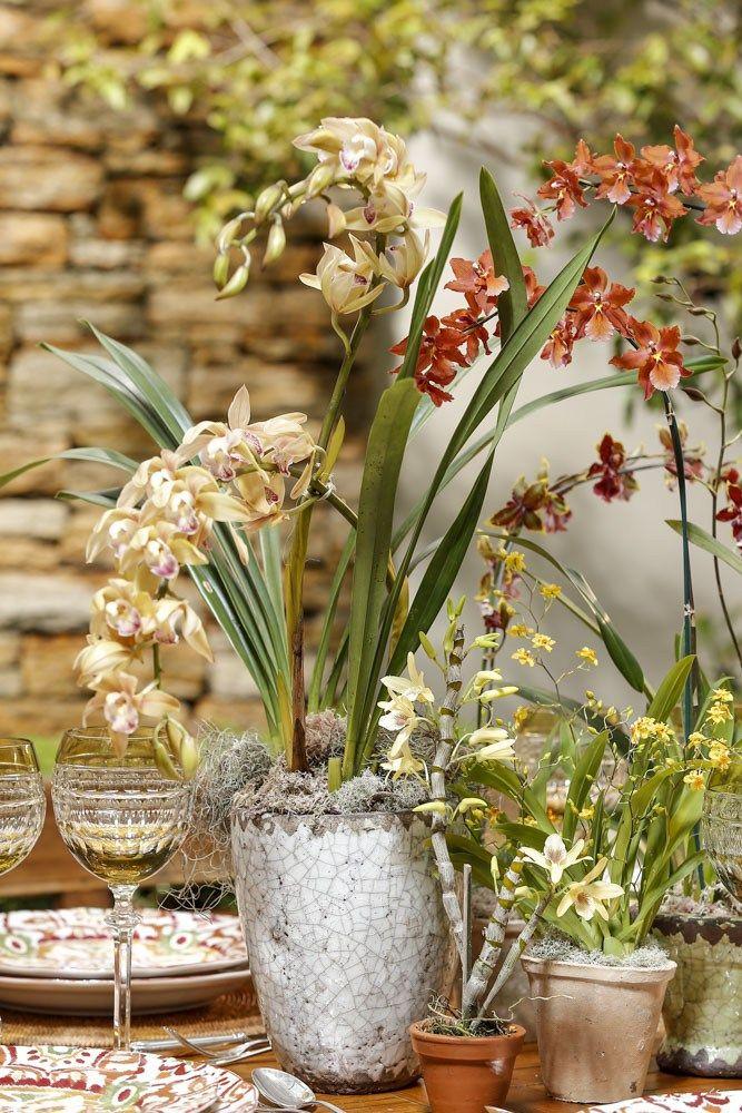 Arranjos by Milplantas com diferentes orquídeas ao centro da mesa, em vasos de barro e outros modelos rústicos para florir um almoço outonal!