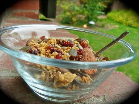Granola maison sans sucre (recette de Rose Bakery) a tester acheter canneberges et raisins secs moelleux jus de pomme..