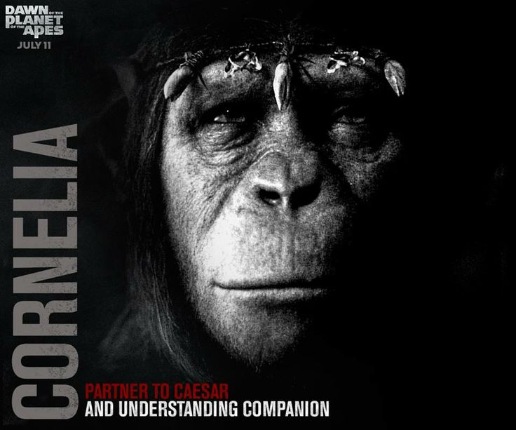 Cornelia | Dawn of the Planet of the Apes | Pinterest | Movie