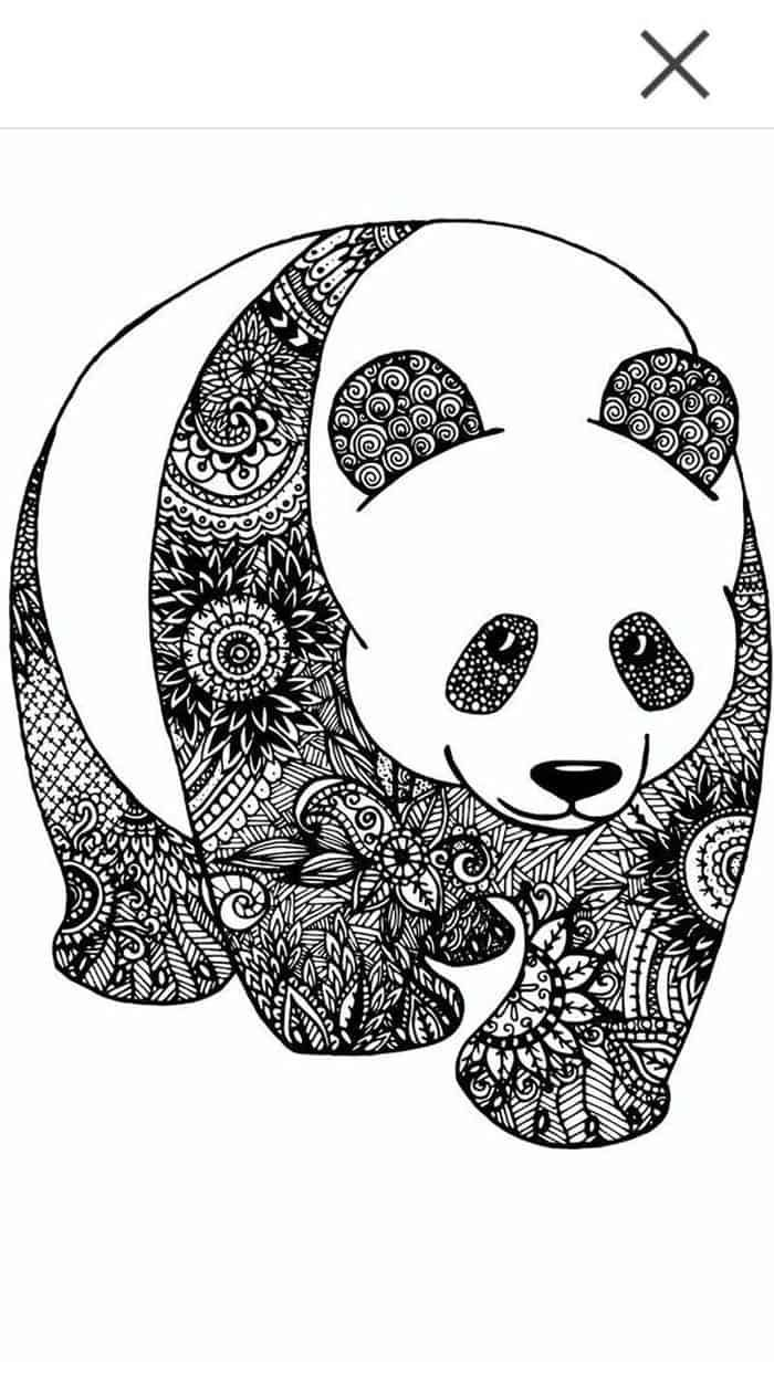 Zentangle Animal Coloring Pages Birds in 2020 | Turtle coloring pages, Animal  coloring pages, Coloring books