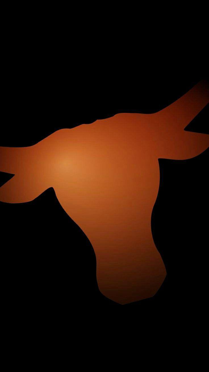 Pin By Bevo Bayareaca On Texas Longhorns In 2020 Texas Longhorns Texas Longhorns Football Longhorns Football