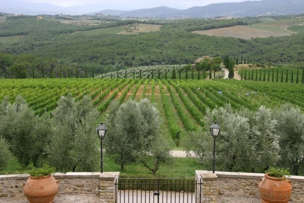 Chianti, Tuscany, Italy - Castello di Gabbiano Winery