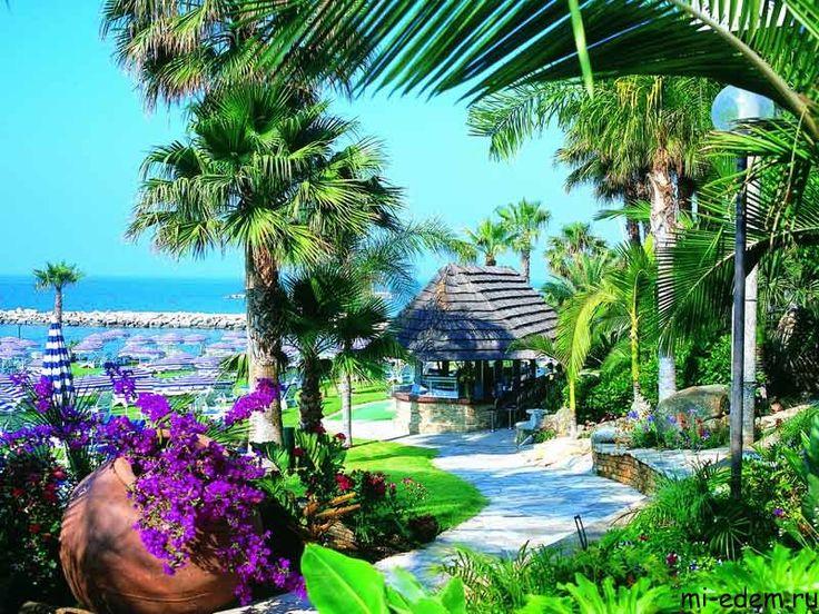 остров кипр какая-то провиза - Google Search