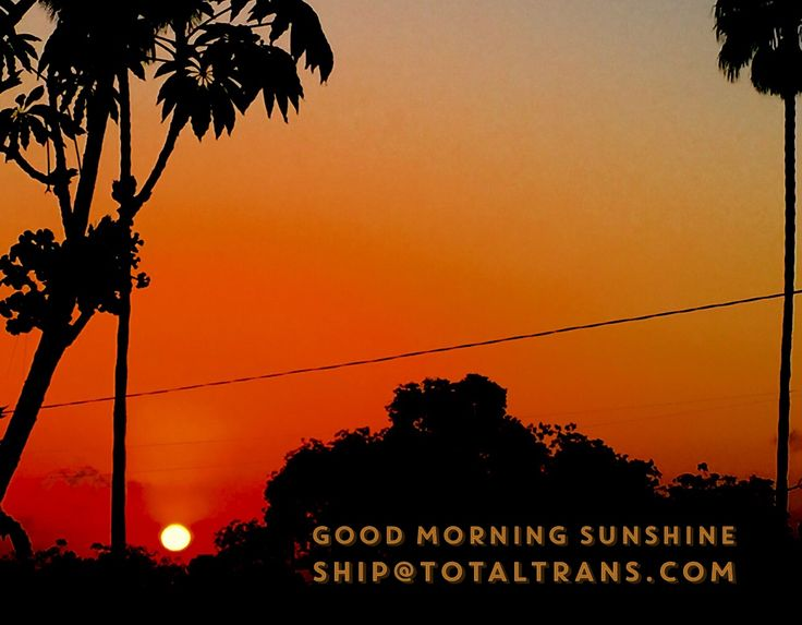 Good Morning Sunshine Russian : Best images about film logistics keep calm ship ttc