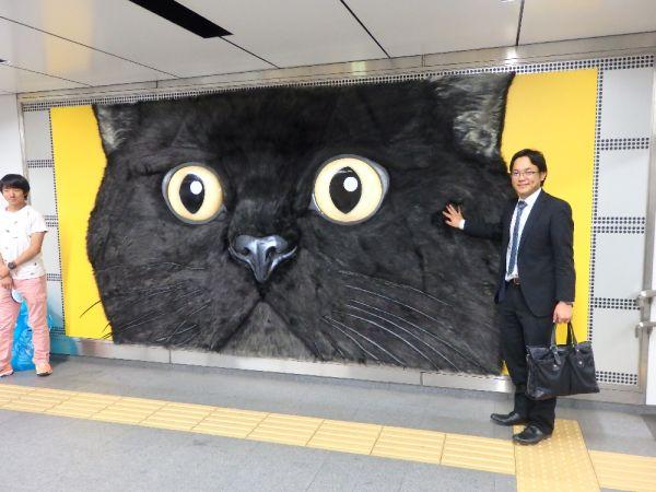 """渋谷駅に現れたクロネコヤマトの""""モフモフ""""広告 Kuroneko Yamato Fluffy ad at Shibuya Station"""