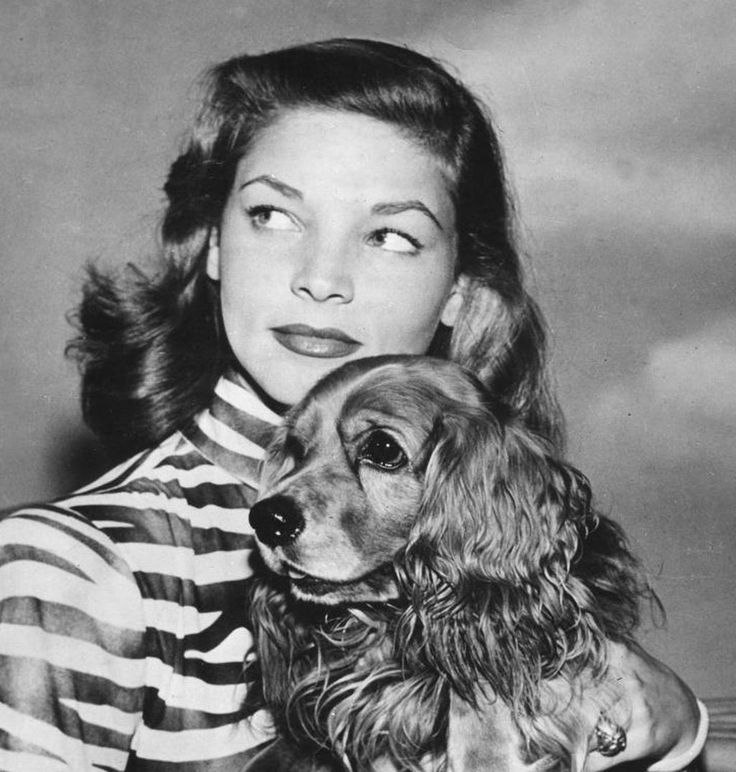 2056 best images about Classic Movies on Pinterest Lauren Bacall Movies
