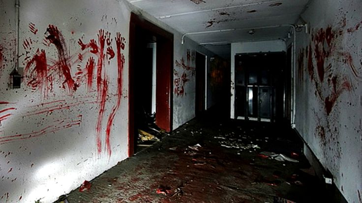 Horror themed escape room. (Not a haunted place but sounds like fun!)