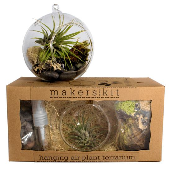 Raise your own Tillandsia, also known as an air plant. Our Hanging Air Plant Terrarium MakersKit includes everything you need to create the perfect environment for caring for one. We'll show you how to take care of the little guy the easy way, just spray with the included water atomizer once a week and place in a bright, sunny spot. The finished terrarium is small and compact, great for hanging in the kitchen, on bedside table or by your work desk. This item is only available in the 48 ...