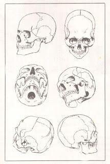 Художники картины и обучение : пластика анатомия и рисунок