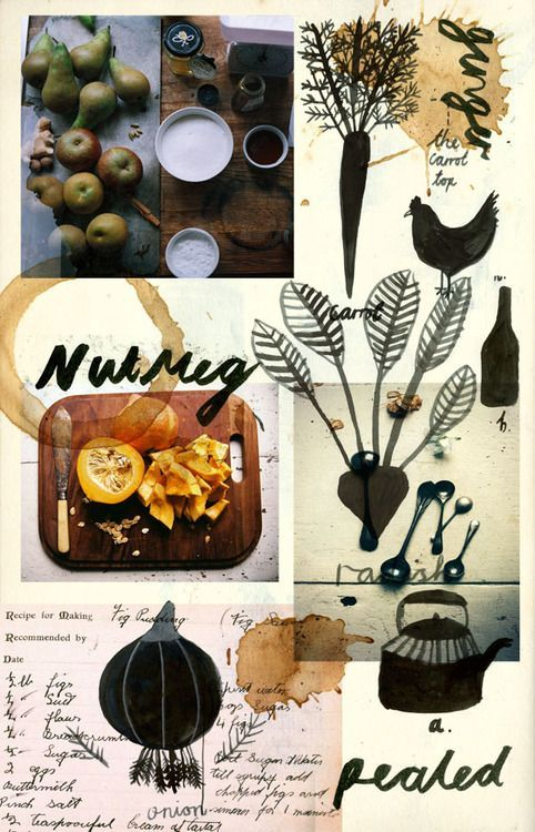 Making beetroot and ginger brownies. Illustration and typography by Katt Frank…