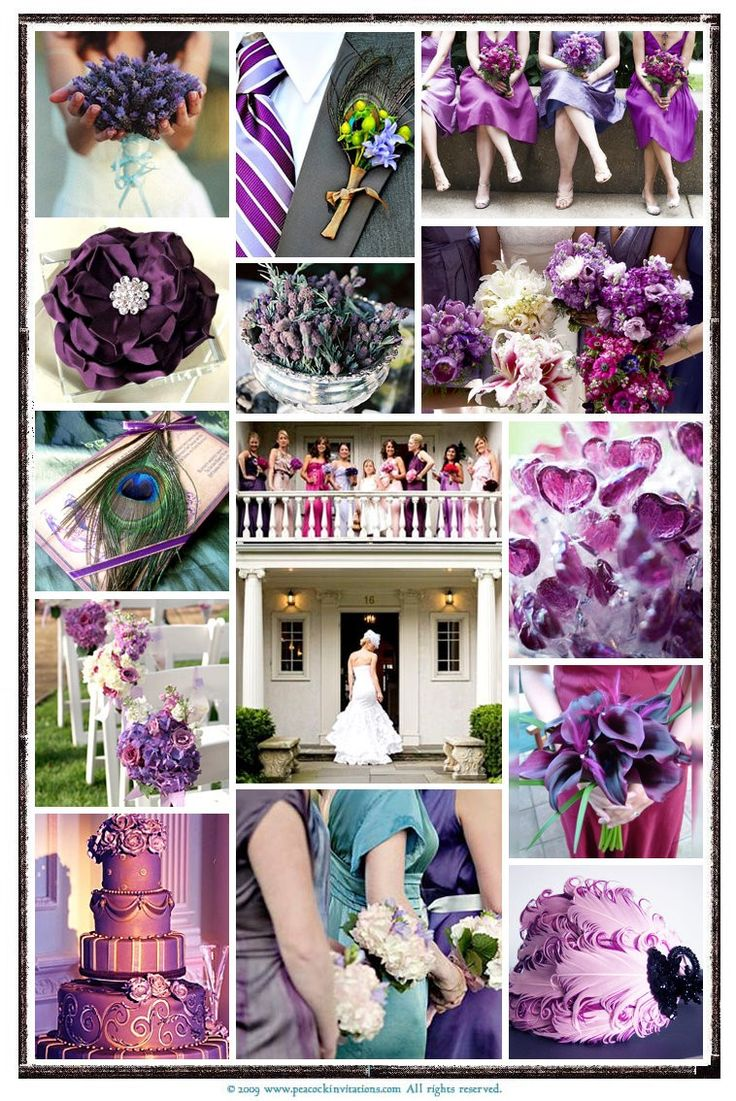 Color & Theme Collage: Ideas, Peacocks, Weddings, Colors Theme, Inspiration Boards, Peacock Wedding, Purple Wedding, Peacock Theme Wedding, Peacock Colors