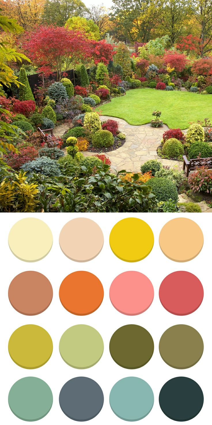Autumn landscape color palette for seasonal theory Autumn color type