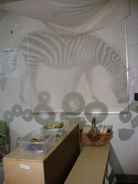 Pictures on the overhead projector ≈≈ http://www.pinterest.com/kinderooacademy/light-shadow-reflection-play/