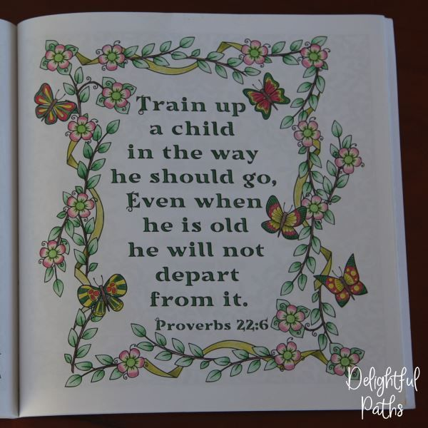 Proverbs adult coloring book from Delightful Paths Proverbs 22:6 NASB