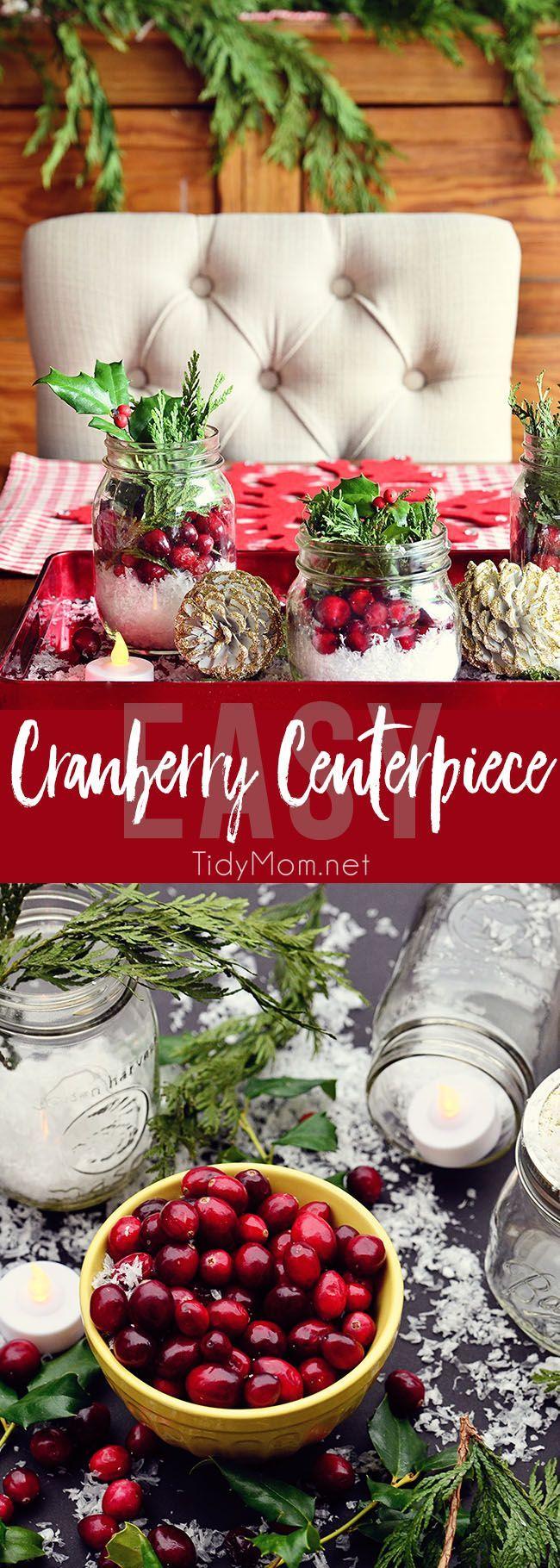 25+ unique Cranberry centerpiece ideas on Pinterest | Diy ...