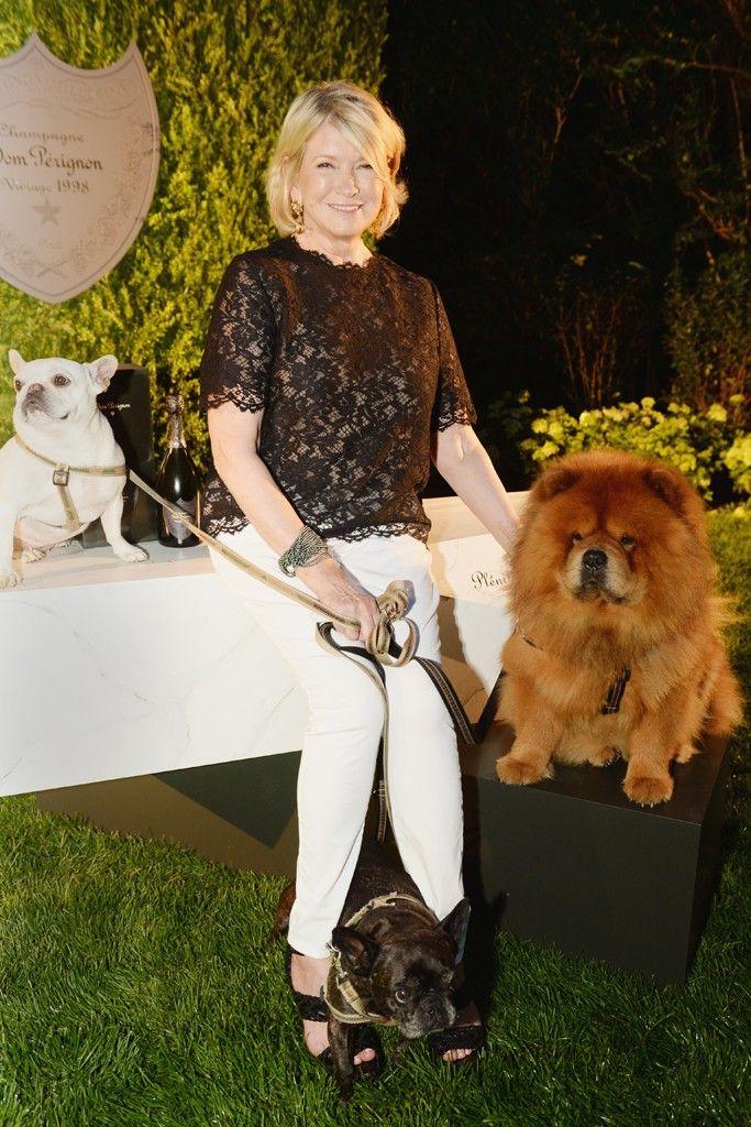 Hamptons Party Round-Up: Martha Stewart Dinner, ACRIA Benefit | WWD
