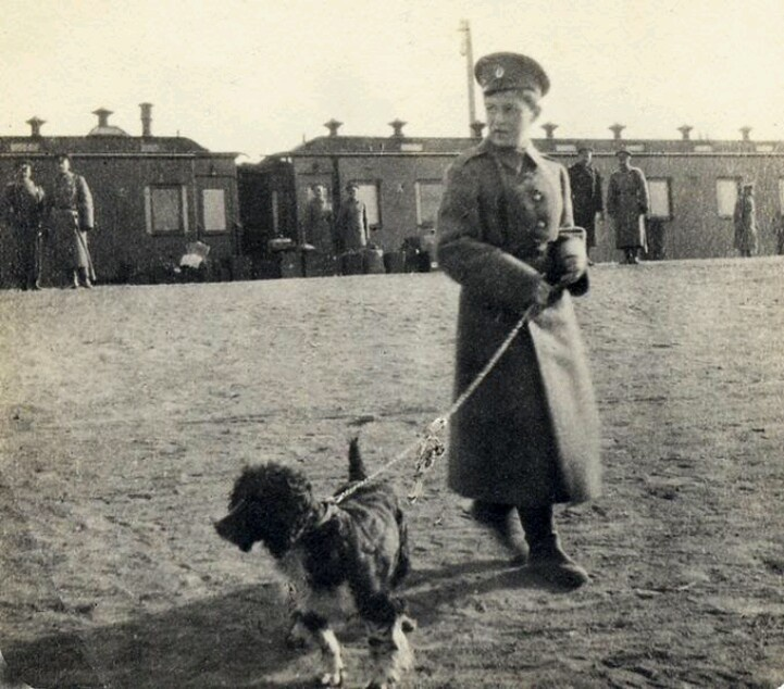 Tsarevitch Alexei and his spaniel, Joy c.1916