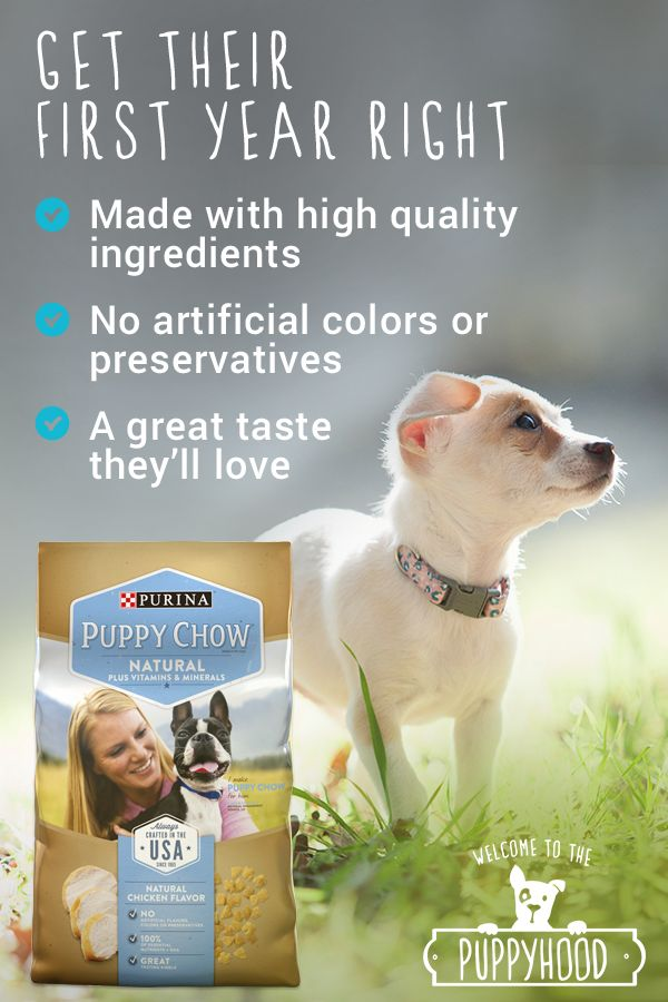 Purina Puppy Chow Natural's puppy recipe without any artificial colors, flavors, or preservatives delivers a high quality, natural food with 100% of the essential nutrients with DHA puppies need to help them grow up healthy and strong. https://dogchow.com/en/dog-food/natural-puppy-food