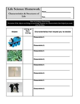 Worksheets Characteristics Of Life Worksheet characteristics of life worksheet quiz stuide guide outline the 8