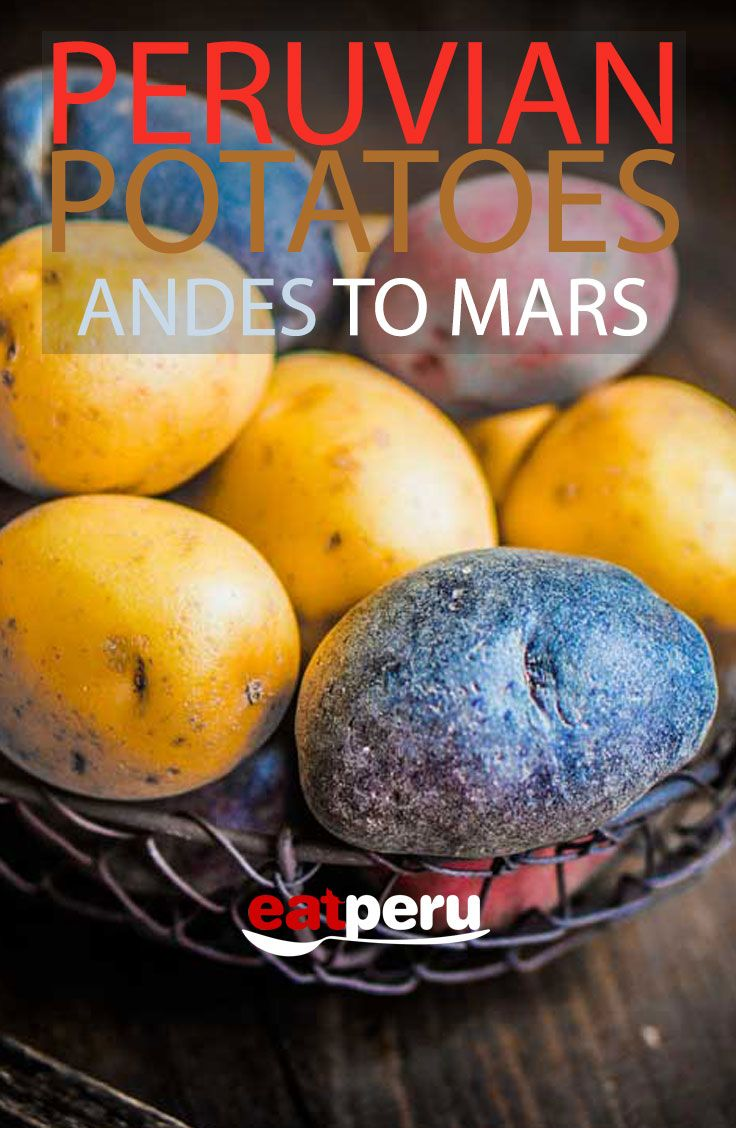 The humble Potato. From the Andes to the dinner plate of astronauts everywhere. #peru #peruvian #peruvianfood #foodie #potato #eat https://www.eatperu.com/potatoes-in-peru/