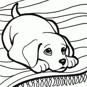 80 best Dibujos animales images on Pinterest  Animals Draw and
