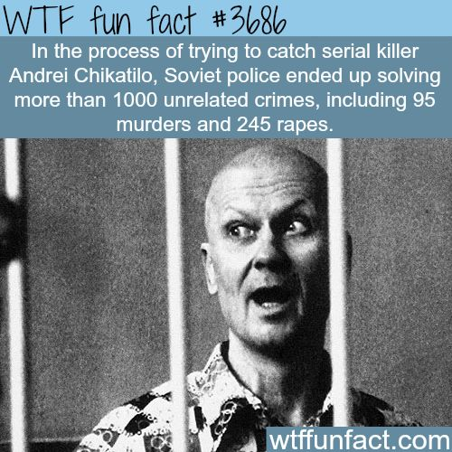 Soviet Police solved 1000 crimes while trying to catch a killer -  WTF fun facts
