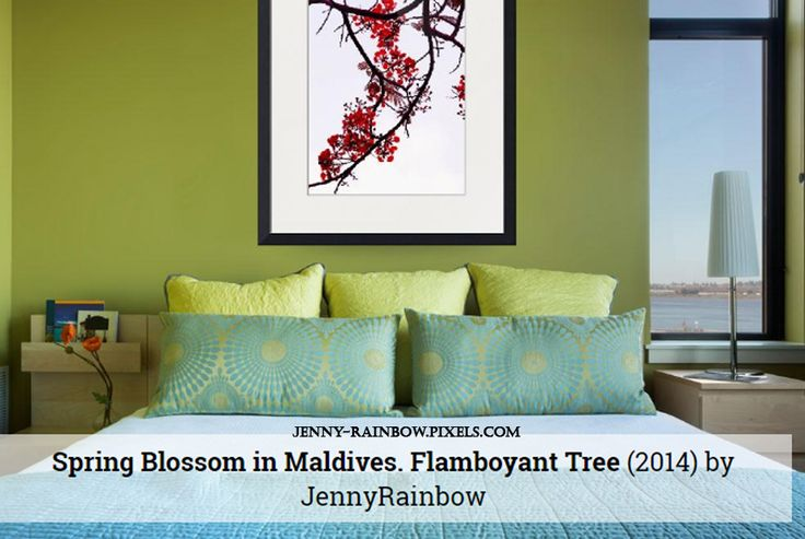 Spring Blossom in Maldives. Flamboyant Tree by Jenny Rainbow  Available as framed, metal, wood and acrylic prints and canvas. Order online, delivery, 30 days money back guarantee:  https://jenny-rainbow.pixels.com/…/spring-blossom-in-maldiv… Splendid blossom of the Flamboyant tree during spring time in Maldives. This image presented in Japanese style. #JennyRainbowFineArtPhotography #FloralArt #HomeDecor
