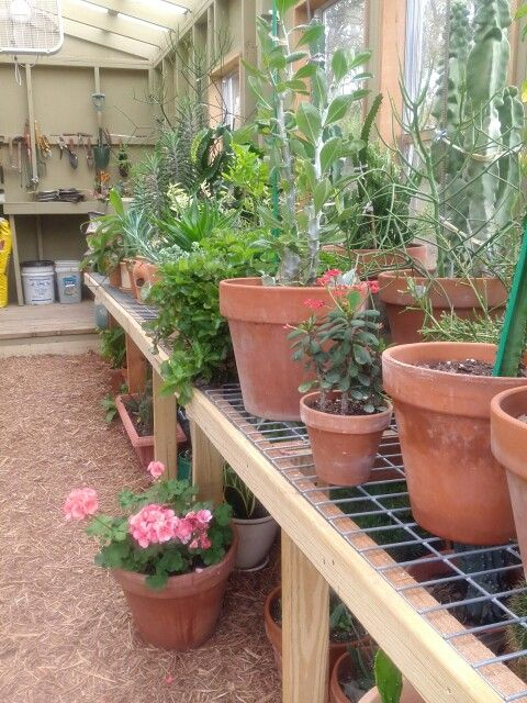 Love shelves for back of future greenhouse...BAM