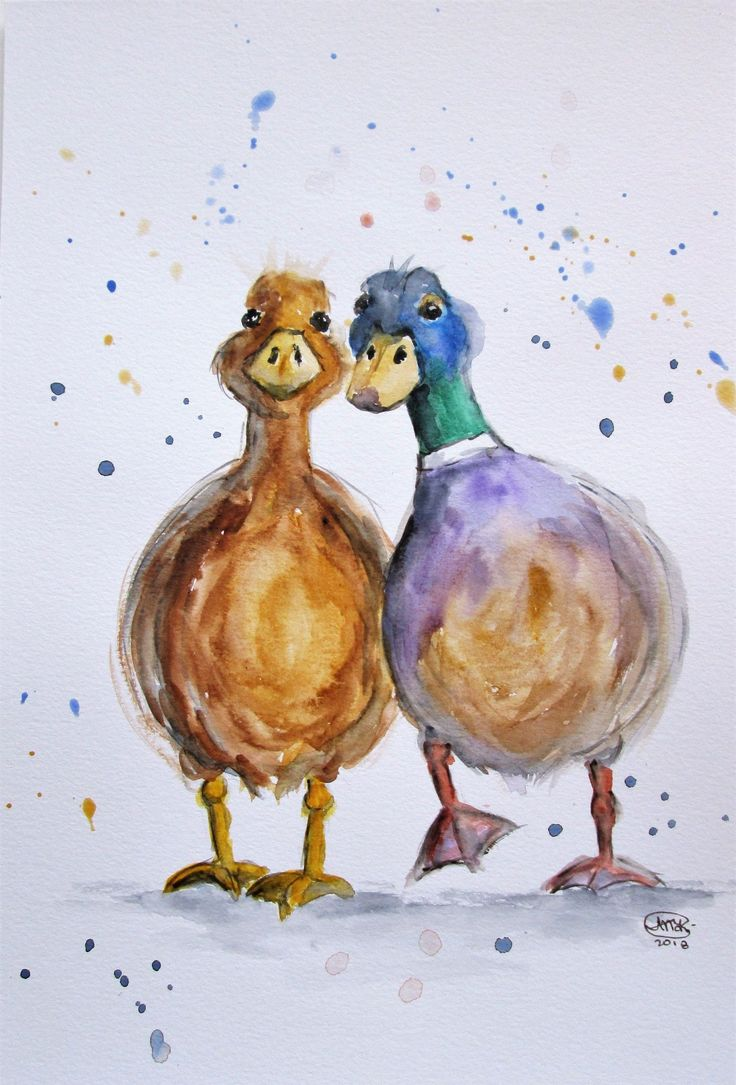 7 Farm Animals Watercolour a90de15e15fc bc46b12 in 2020