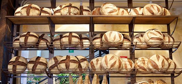 Aconchego, delícias gastronômicas e qualidade. Estas são algumas das características da Le Pain Quotidien, uma consagrada rede internacional de padarias belga. A primeira unidade será instalada no bairro da Vila Madalena, na cidade de São Paulo.