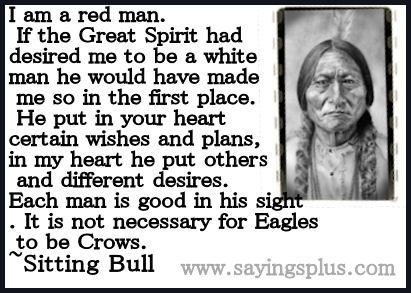 Famous Native American Quotes | 22 famous Native American Quotes | Who said that???
