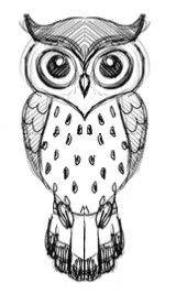 owl design sketch