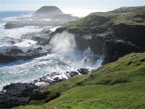 Philip Island, Australia (Image credit: Melissa Nagy) http://on.msnbc.com/xFctZ9
