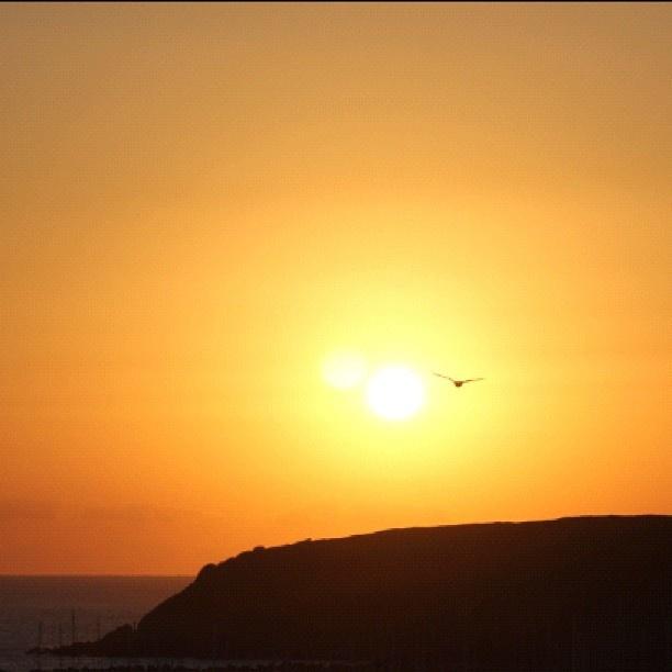 """@cherriryan's photo: """"Waiting for the sun #vanishingelephant #nofilter"""""""