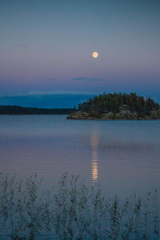 ... am Saimaasee bei Puumala. (Finnland) * * * * * Konstruktive Kritik ist herzlich willkommen.