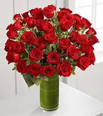 ROSES OH RED ROSES!!
