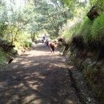 walking to ijen crater