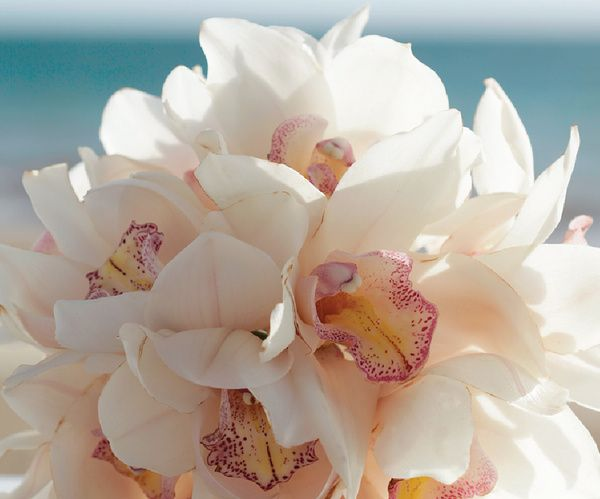 Pink and white orchid bridal bouquet | Metallic Sands Collection at Palace Resorts #destinationwedding
