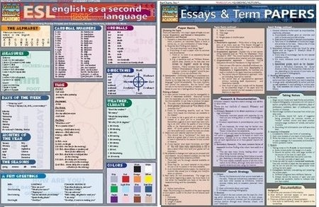 Essay On Goals And Aspirations English Is My Second Language Essay College Essays College Application  Essays  English Is My Second  Cause And Effect Essay About Smoking also My Dream Vacation Essay  Best English As A Second Language Images On Pinterest  English  Informal Outline For Essay
