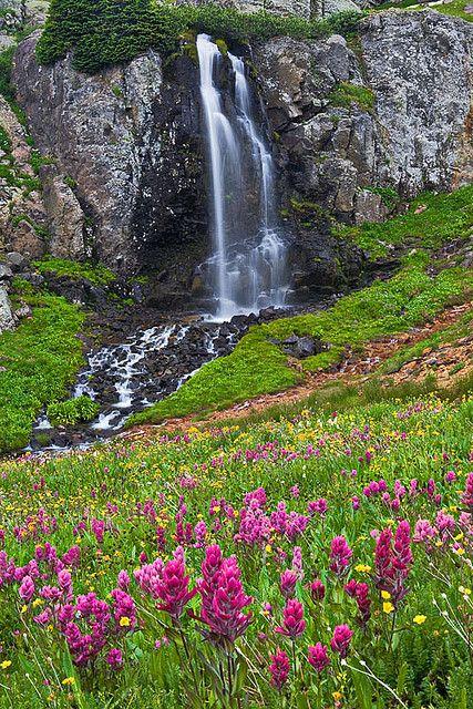 mountains waterfalls forest usa - photo #31